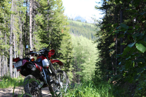 back country riding